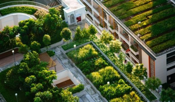 Brand Urbanism (parte 2) Blog play urban play IGPDecaux