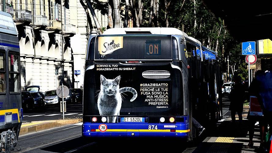 OOH advertising IGPDecaux in Turin FullBack for Sheeba