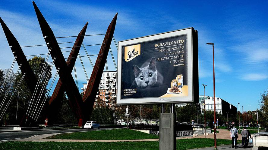 OOH advertising in Turin IGPDecaux Senior for Sheeba